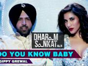 Do You Know Baby - Dharam Sankat Mein (2015) - 720p HD