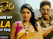 You Are My MLA_ Sarrainodu [2016] 720p HD