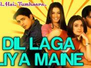 Dil Laga Liya Maine - Dil Hai Tumhaara