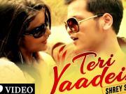 Teri Yaadein [2015] - Shrey Singhal 720p HD