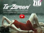 Tu Zaroori - ZiD 2014 Mannara _ Karanvir _ Sunidhi _ Sharib - Toshi