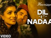 'Dil-e-Nadaan' Video Song