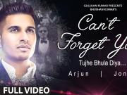 Arjun: Can't Forget You