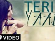 Teri Yaad _2014_  Official Full HD  Hindi Songs (HD)