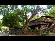 Yathe Yathe From Aadukalam Ayngaran HD Quality